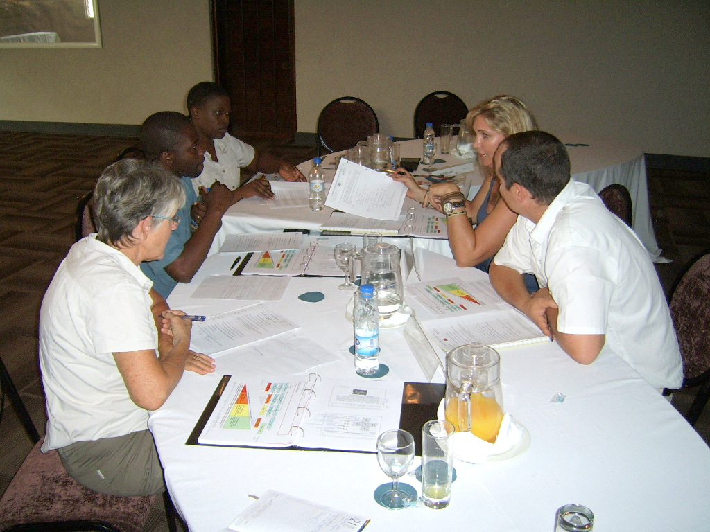 COHS Group Discussion Victoria Falls March 2014